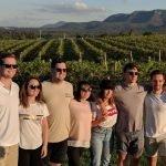 group in vineyard | brokenback range